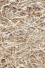 Background texture with a bale of straw