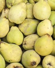 Pile of appetizing quince in supermarket