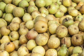 Fresh apple and pears exposed for sale