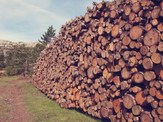 Stères de bois