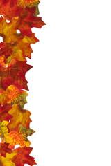 Autumn Leaf Stripe 3 Background