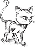 Cat Kitten Sketch Doodle Vector Illustration Art