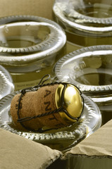 Vino spumante Sparkling wine Vin effervescent  espumoso