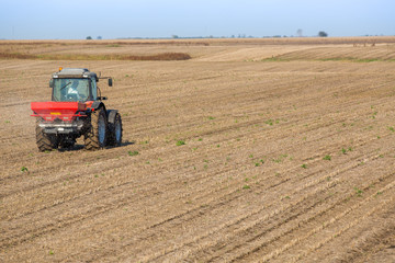 Farmer fertilizing soybean residues field with npk fertilizer