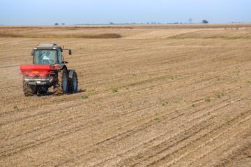 Farmer fertilizing soybean residues field with npk fertilizer