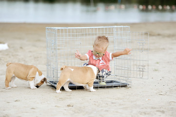 the little boy plays on the river bank with puppies