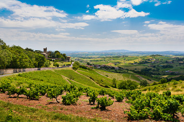 Montmelas castle and vineyards - Beaujolais