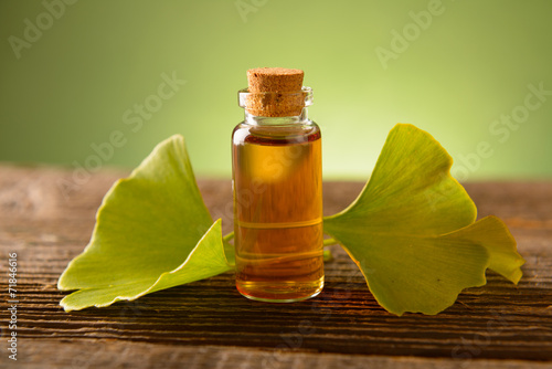 Gonkgo leaves and extract - 71846616