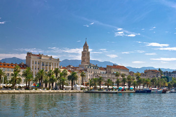 Split waterfront palm promenade view