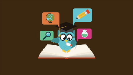 owl on book, education concept, Animation Design, HD 1080