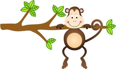 Monkey Hanging Tree
