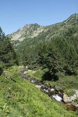 Ruisseau d'artounant,Pyrénées ariégeoises