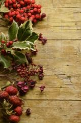 Herboristerie Herbalismo Pflanzenheilkunde Erboristeria