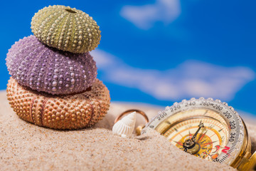 Sea shells, compass on sand and blue sky