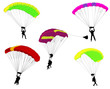 skydivers illustration - vector - 71852664