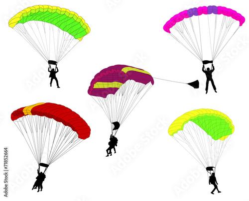 skydivers illustration - vector