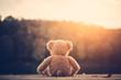 Leinwanddruck Bild - Teddy bear