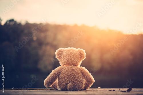 Leinwanddruck Bild Teddy bear