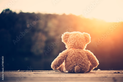 Teddy bear - 71854031