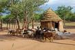 Leinwanddruck Bild - Himba village near the Etosha National Park in Namibia