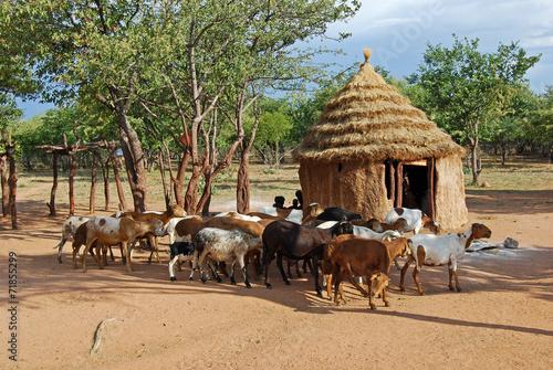 Leinwanddruck Bild Himba village near the Etosha National Park in Namibia