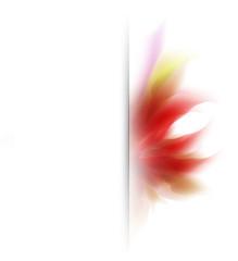 Flower vector background, easy all editable