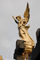 Angel at the  Recoleta cemetery