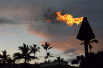 Hawaii Torch.