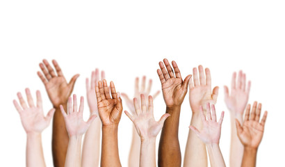 Group Of Arms Outstretched In A White Background