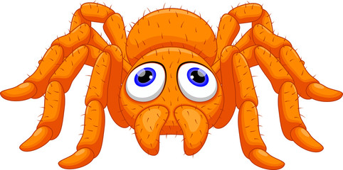 Cute Tarantula cartoon