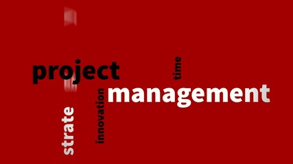 project management background