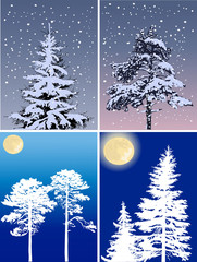 four compositions with firs in snow