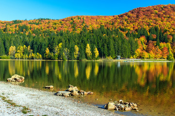 Autumn landscape and colorful forest,St Ana Lake,Romania