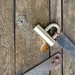 Modern padlock on textured black wooden door