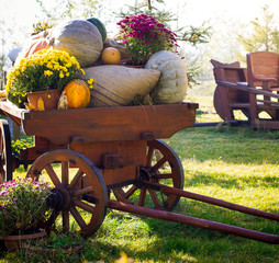 wooden cart with autumn harvest