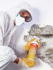 Pest controler eliminiates a mold infestation