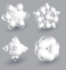 Beautiful ice flowers collection