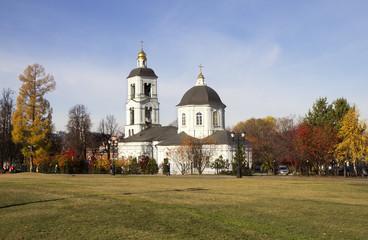 Москва. Царицыно.Церковь «Живоносный источник»