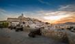canvas print picture - Dalt Vila fortress at sunset
