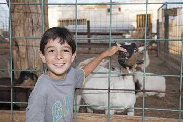 Niño acariciando cabra