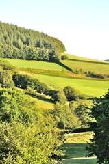 Rural landscape in Morvan