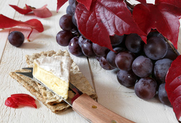 French cheese Coulommiers on crispbread, red grapes and autumn l