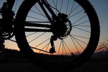 Hinterrad eines Mountainbikes bei Sonnenuntergang