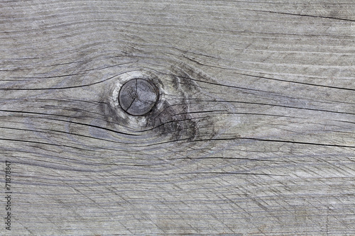 canvas print picture Graues Holz mit Astloch,Hintergrund, Struktur, Studio