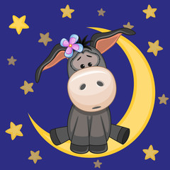 Cute Donkey on the moon