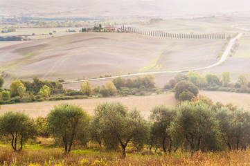 Picturesque views of the beautiful countryside of Tuscany