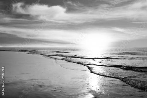 Strand - Monochrom - 71881084