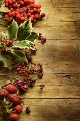 Herboristerie Herbalismo Pflanzenheilkunde Erboristeria Natale