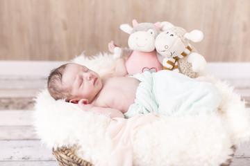 Newborn Kleine Prinzessin