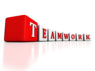 concept TEAMWORK word blocks raw structure on white background